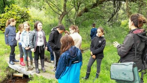 PLONEOUR-LANVERN - École N.-D. de Bon Secours. Observation et exploration de la rivière