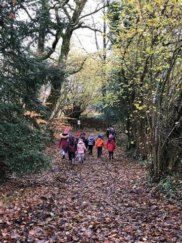 GLOMEL - Promenade en forêt pour les bilingues !