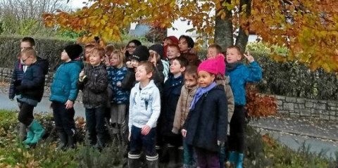 ROSTRENEN - Les élèves de l'école Notre-Dame se penchent sur la biodiversité