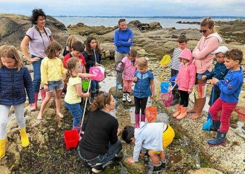 CONCARNEAU - Dernière sortie en bord de mer pour les enfants du Sacré-Cœur