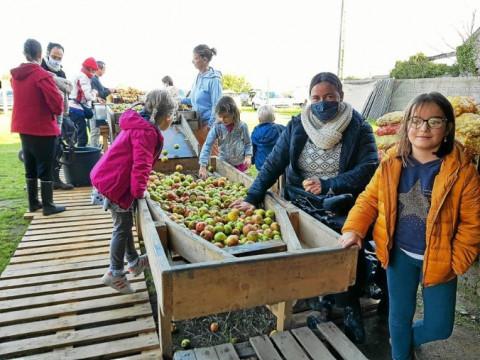 GUISSENY - Pressage de pommes : 365 litres de jus obtenus par Dihun bro Gwiseni