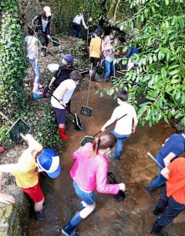LANDIVISIAU - Les jeunes élèves de Notre-Dame des Victoires au chevet des écosystèmes