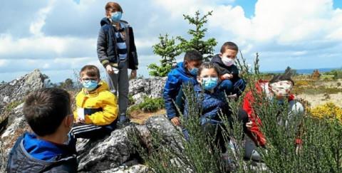 CONCARNEAU - Une sortie nature pour les élèves de Notre-Dame du Sacré-Cœur